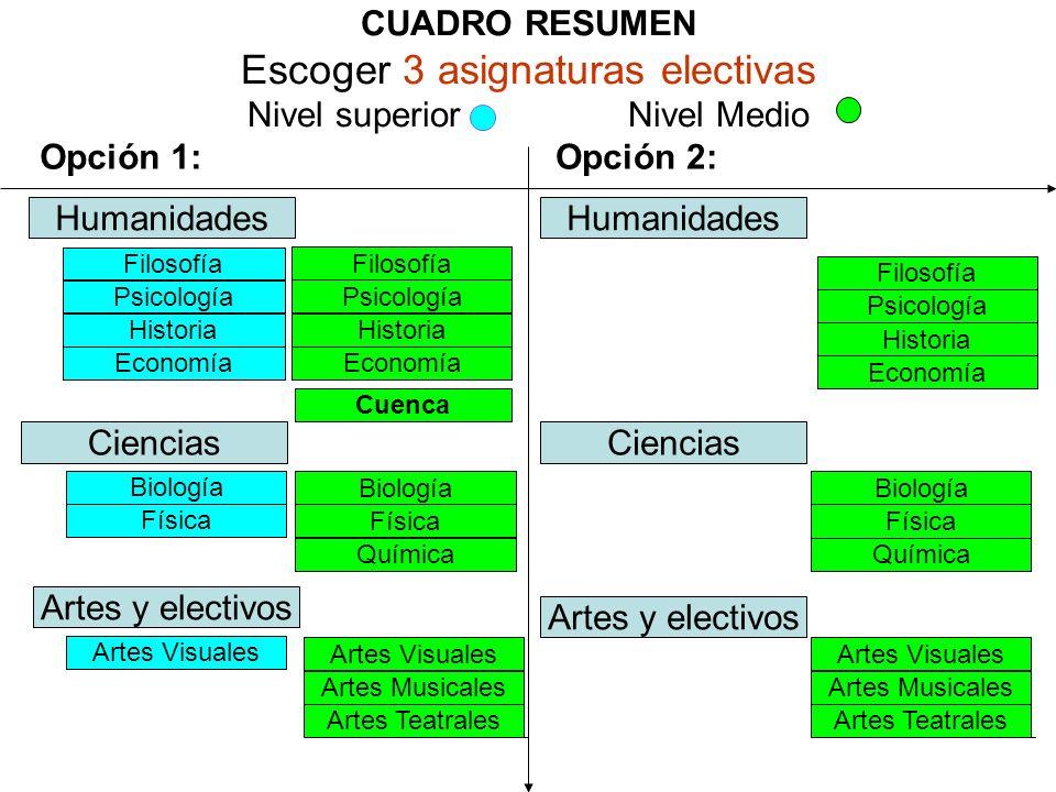 CUADRO RESUMEN Escoger 3 asignaturas electivas Nivel superior Nivel Medio Opción 1: Humanidades Filosofía Psicología Historia Economía Filosofía Psico