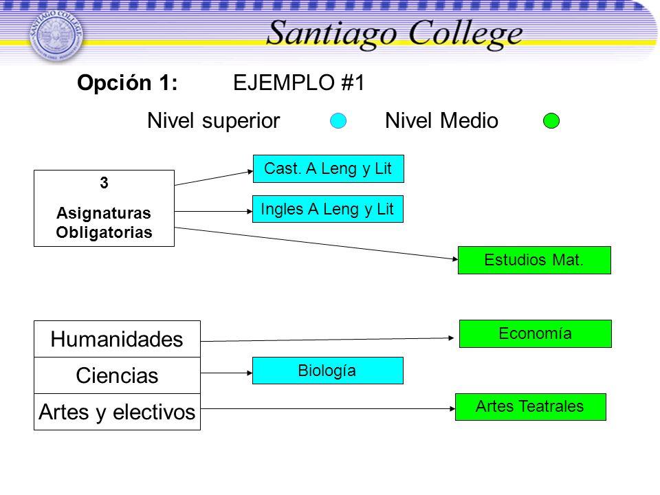 Opción 1: EJEMPLO #1 Nivel superior Nivel Medio 3 Asignaturas Obligatorias Ingles A Leng y Lit BiologíaArtes Teatrales Estudios Mat. Humanidades Cienc