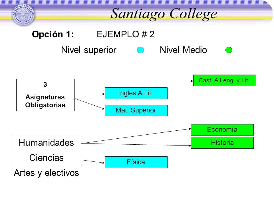 Opción 1: EJEMPLO # 2 Nivel superior Nivel Medio 3 Asignaturas Obligatorias Ingles A Lit. Mat. Superior Humanidades Ciencias Artes y electivos Cast. A