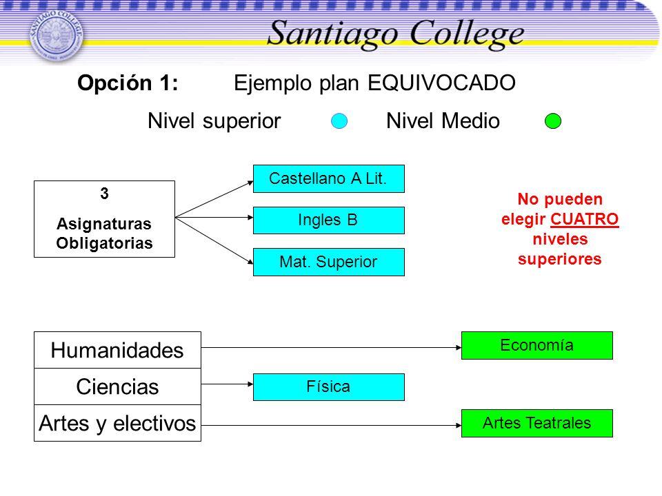 Opción 1: Ejemplo plan EQUIVOCADO Nivel superior Nivel Medio Humanidades Ciencias Artes y electivos 3 Asignaturas Obligatorias Castellano A Lit. Ingle