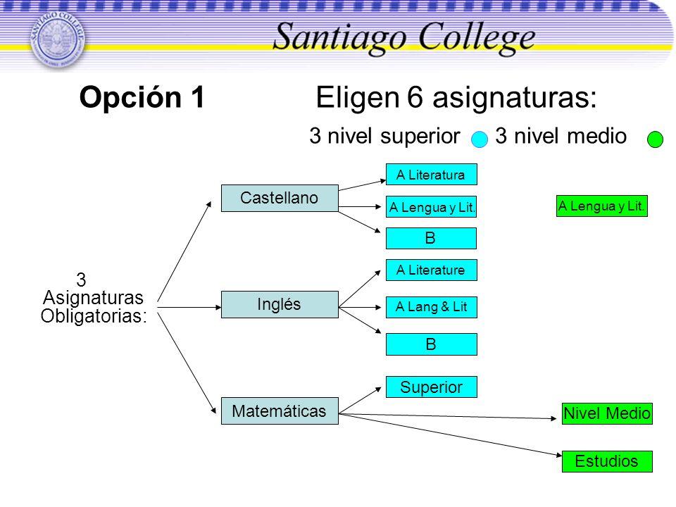 Opción 1 Eligen 6 asignaturas: 3 nivel superior 3 nivel medio 3 Asignaturas Obligatorias: Castellano Inglés Matemáticas A Literatura B Superior A Lite