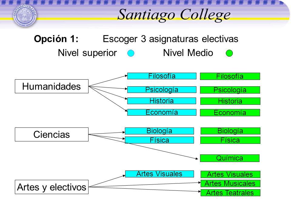 Opción 1: Escoger 3 asignaturas electivas Nivel superior Nivel Medio Filosofía Psicología Historia Psicología Historia Economía Química Biología Físic