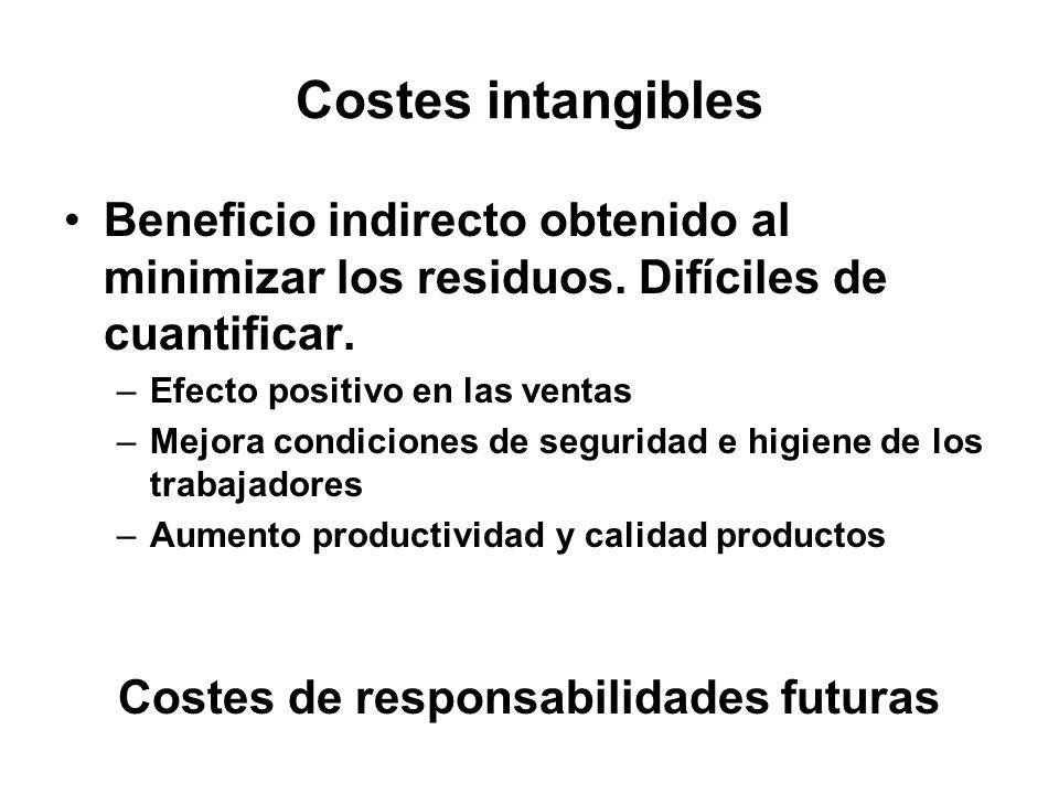 Costes intangibles Beneficio indirecto obtenido al minimizar los residuos. Difíciles de cuantificar. –Efecto positivo en las ventas –Mejora condicione