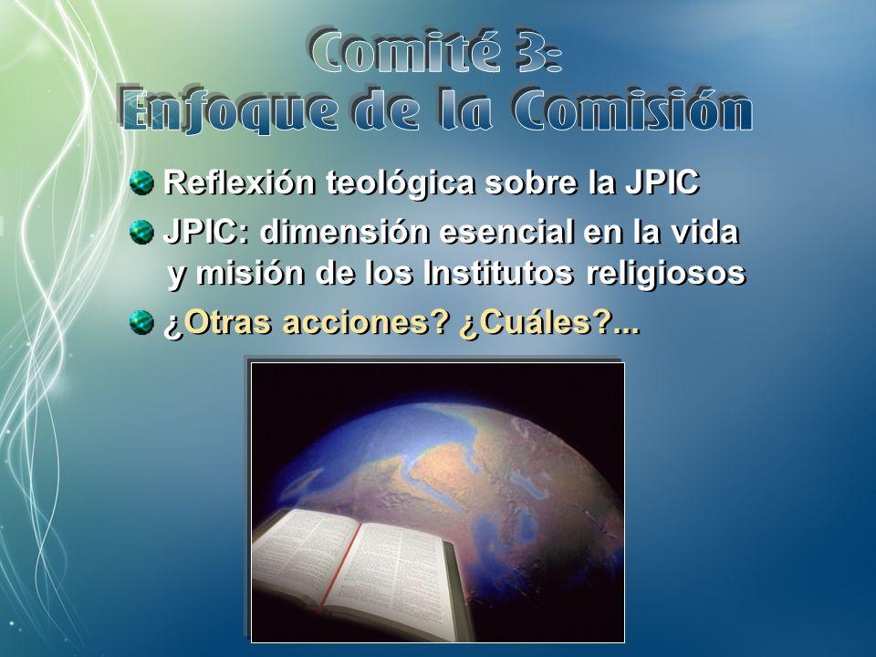 DVD con materiales JPIC Taller de tres días para promotores/as nuevos/as ¿Otras acciones.