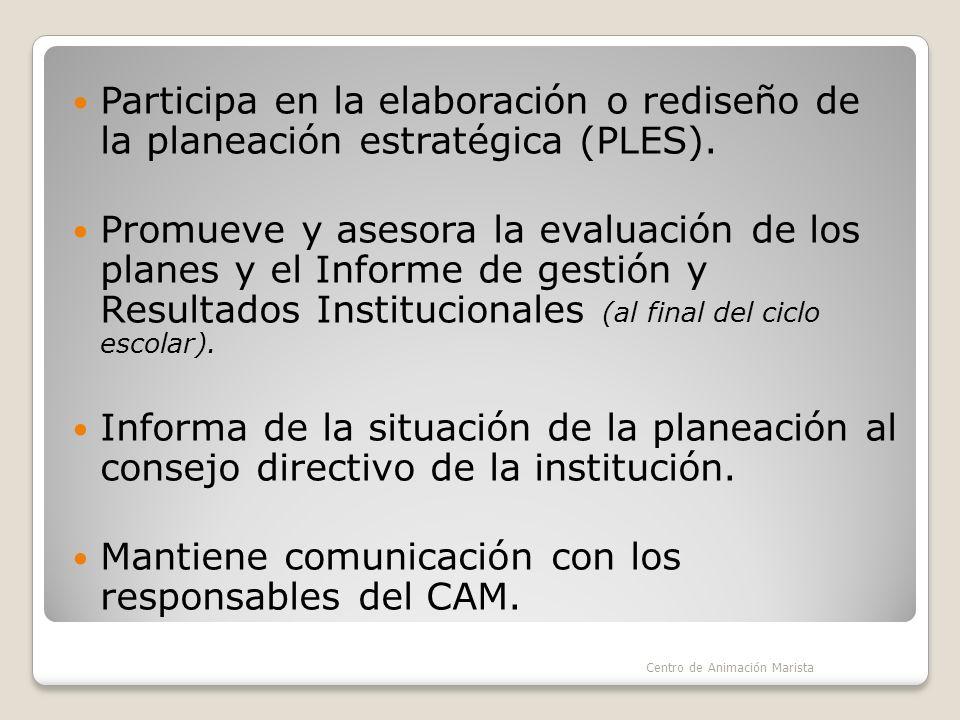 Participa en la elaboración o rediseño de la planeación estratégica (PLES).