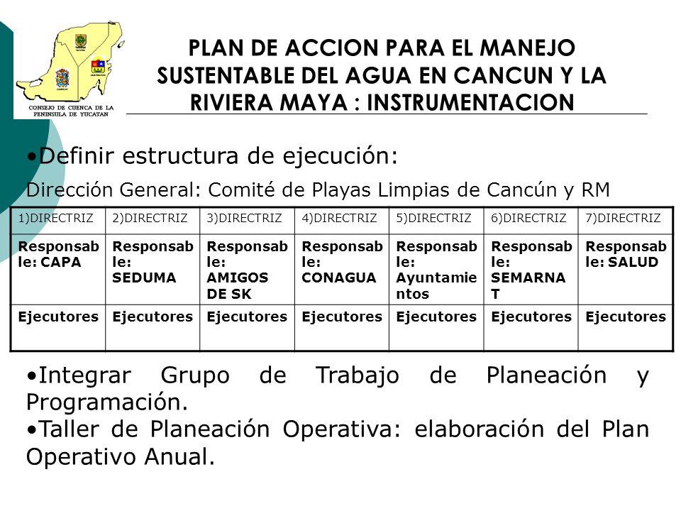PLAN DE ACCION PARA EL MANEJO SUSTENTABLE DEL AGUA EN CANCUN Y LA RIVIERA MAYA : INSTRUMENTACION Definir estructura de ejecución: Dirección General: C