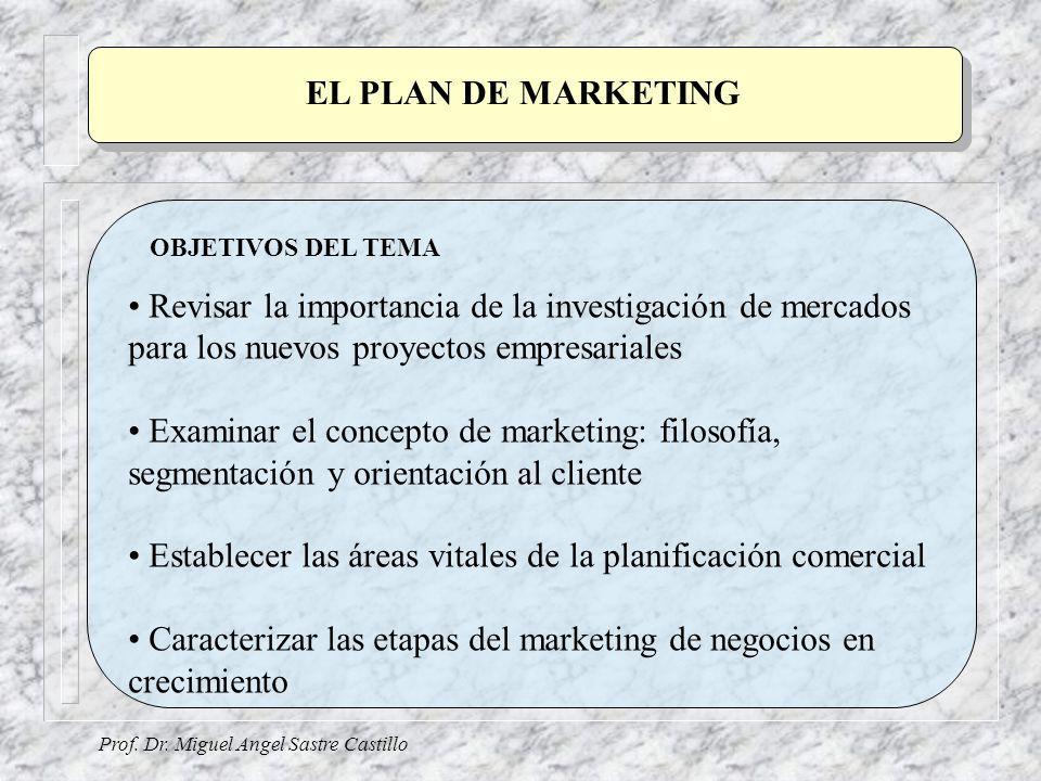 EL PLAN DE MARKETING Prof. Dr. Miguel Angel Sastre Castillo OBJETIVOS DEL TEMA Revisar la importancia de la investigación de mercados para los nuevos