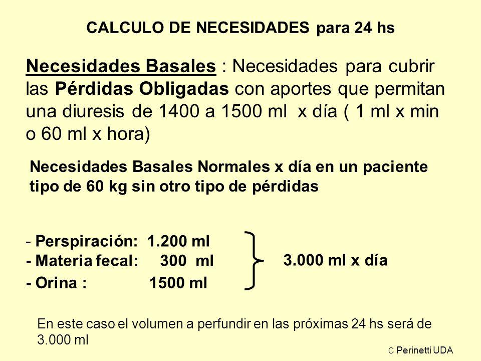 CALCULO DE NECESIDADES NECESIDADES BASALES (EN 24 HS) NECESIDADES BASALES AUMENTADAS (EN 24 HS) PERDIDAS EXTRAORDINARIAS PROSPECTIVAS (EN 24 HS) PERDIDAS EXTRAORDINARIAS ACUMULADAS TOTAL DE NECESIDADES (EN 24 HS) C Perinetti UDA