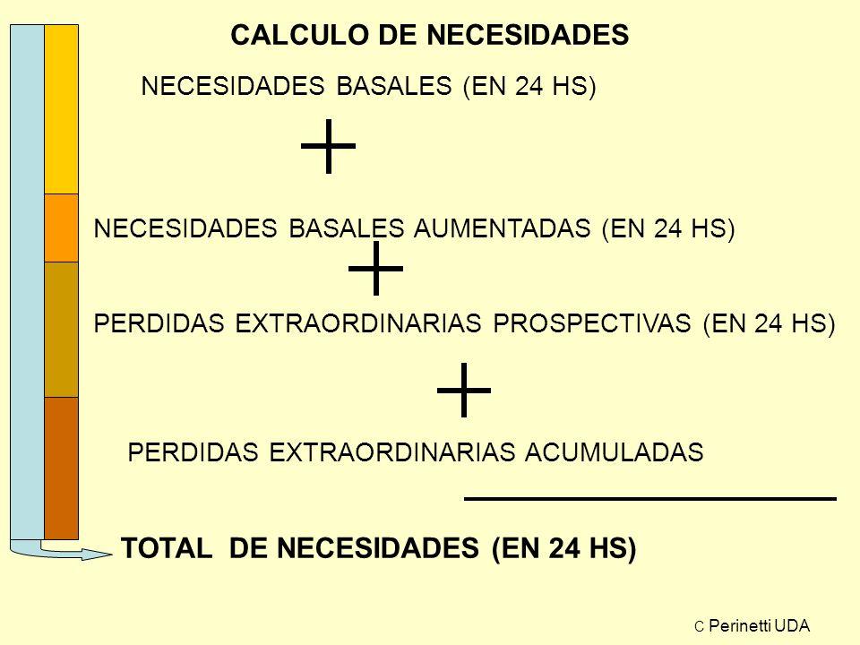 CALCULO DE NECESIDADES NECESIDADES BASALES (EN 24 HS) NECESIDADES BASALES AUMENTADAS (EN 24 HS) PERDIDAS EXTRAORDINARIAS PROSPECTIVAS (EN 24 HS) PERDI