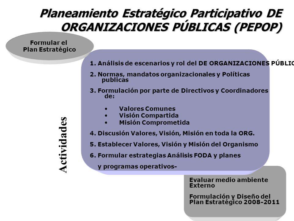 Evaluar medio ambiente Externo Formulación y Diseño del Plan Estratégico 2008-2011 1. Análisis de escenarios y rol del DE ORGANIZACIONES PÚBLICAS 2. N