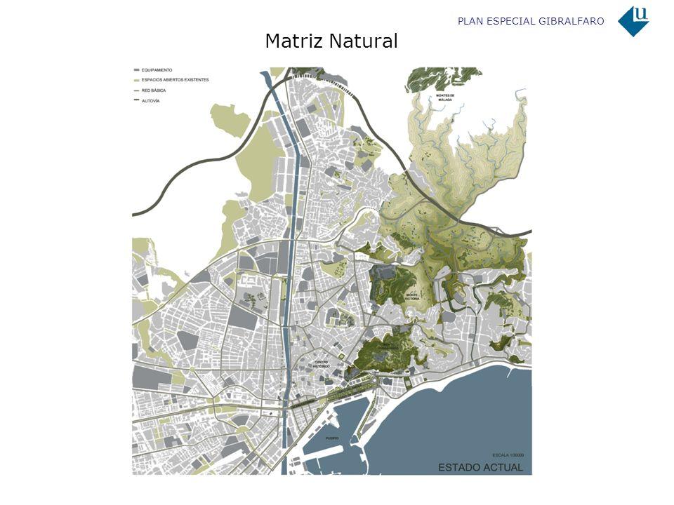 PLAN ESPECIAL GIBRALFARO Propuesta de corredor Gibralfaro – Montes de Málaga