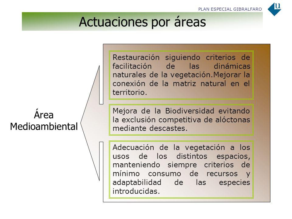 Actuaciones por áreas Área Medioambiental Restauración siguiendo criterios de facilitación de las dinámicas naturales de la vegetación.Mejorar la cone