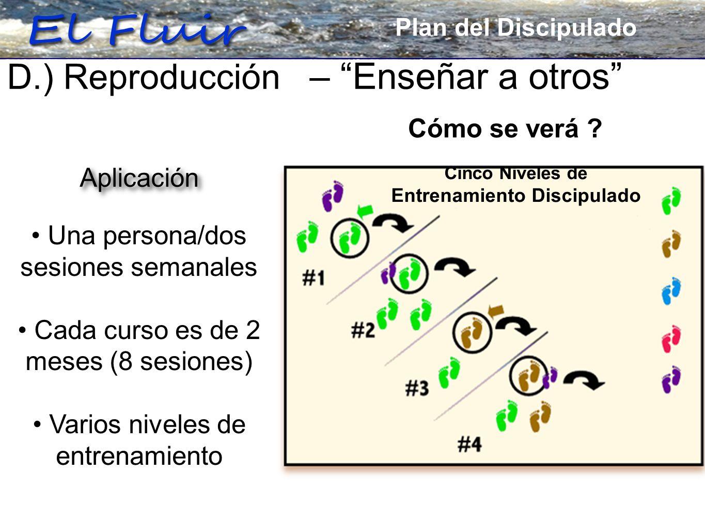 Plan for Discipleship D.) Reproducción – Enseñar a otros Una persona/dos sesiones semanales Cada curso es de 2 meses (8 sesiones) Varios niveles de entrenamiento Cómo se verá .