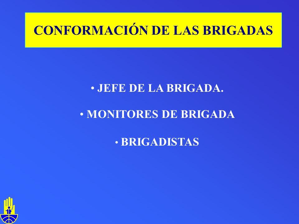 JEFE DE LA BRIGADA. MONITORES DE BRIGADA BRIGADISTAS CONFORMACIÓN DE LAS BRIGADAS