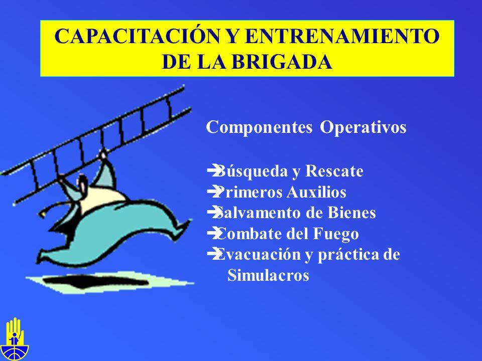 Componentes Operativos èBúsqueda y Rescate èPrimeros Auxilios èSalvamento de Bienes èCombate del Fuego èEvacuación y práctica de Simulacros CAPACITACIÓN Y ENTRENAMIENTO DE LA BRIGADA