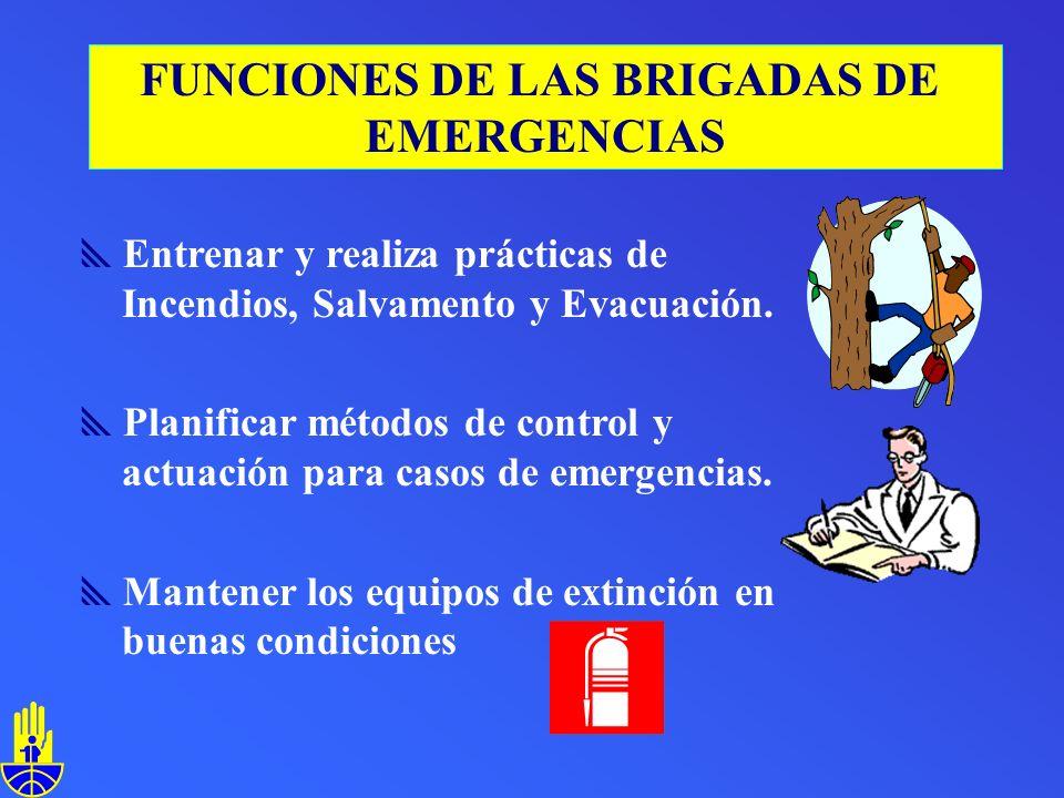 Entrenar y realiza prácticas de Incendios, Salvamento y Evacuación.