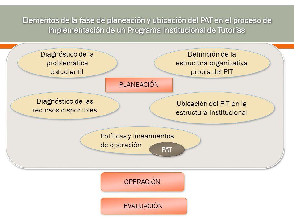 Diagnóstico de la problemática estudiantil Diagnóstico de las recursos disponibles Ubicación del PIT en la estructura institucional Definición de la e