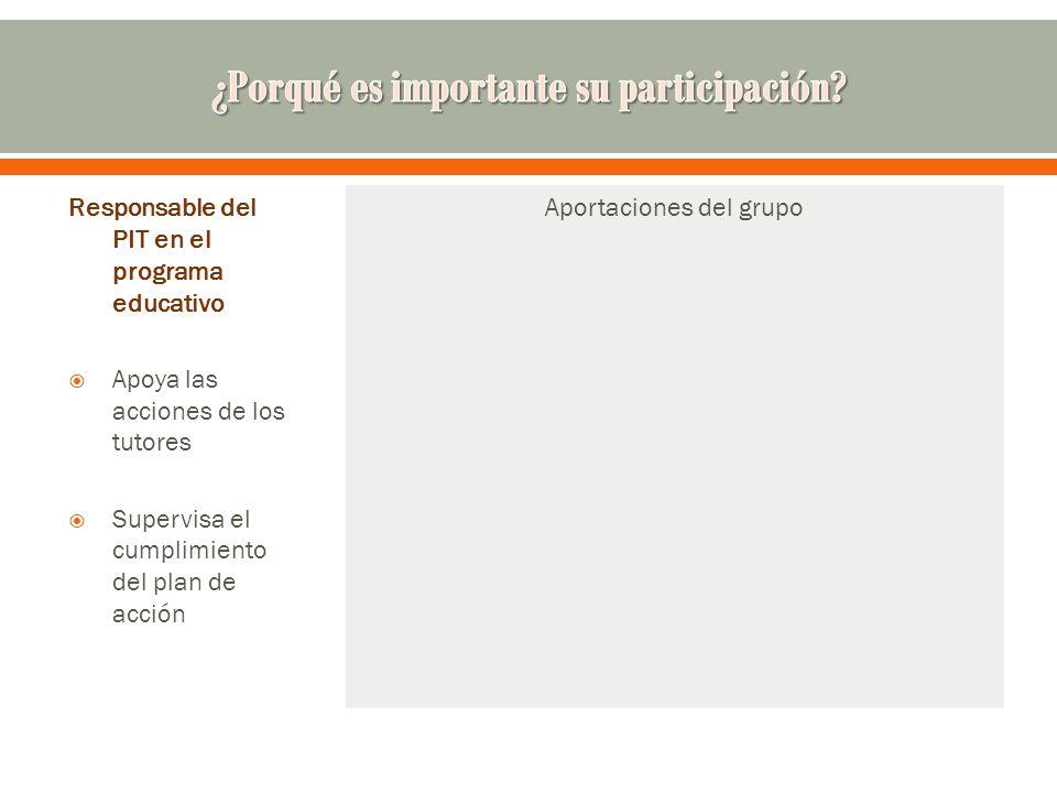 Responsable del PIT en el programa educativo Apoya las acciones de los tutores Supervisa el cumplimiento del plan de acción Aportaciones del grupo