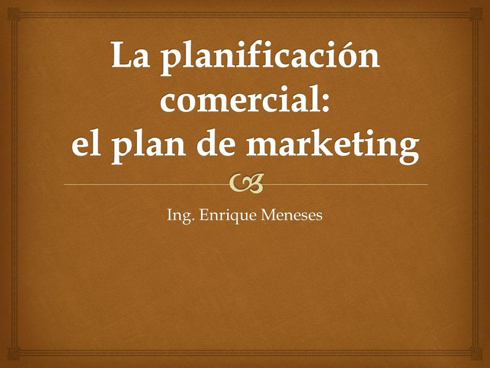 Ing. Enrique Meneses