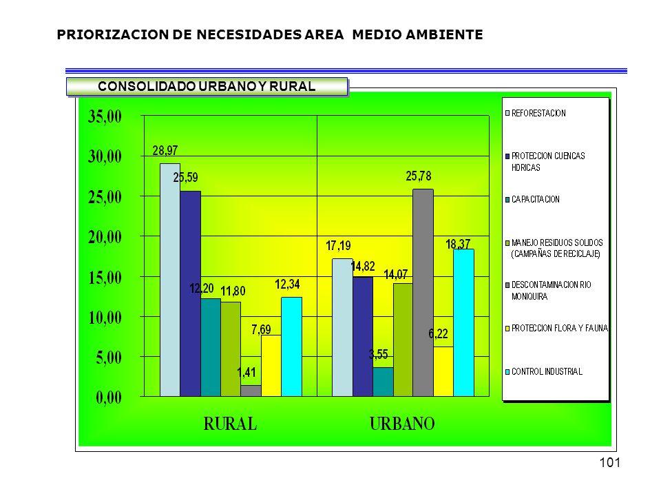 101 PRIORIZACION DE NECESIDADES AREA MEDIO AMBIENTE CONSOLIDADO URBANO Y RURAL