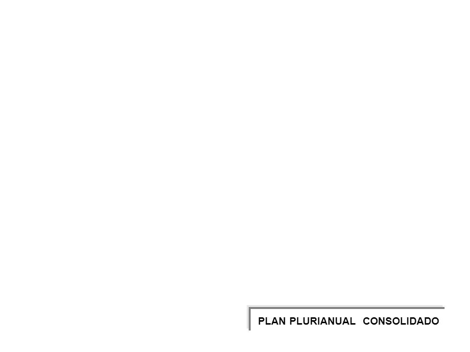 113 PLAN PLURIANUAL CONSOLIDADO