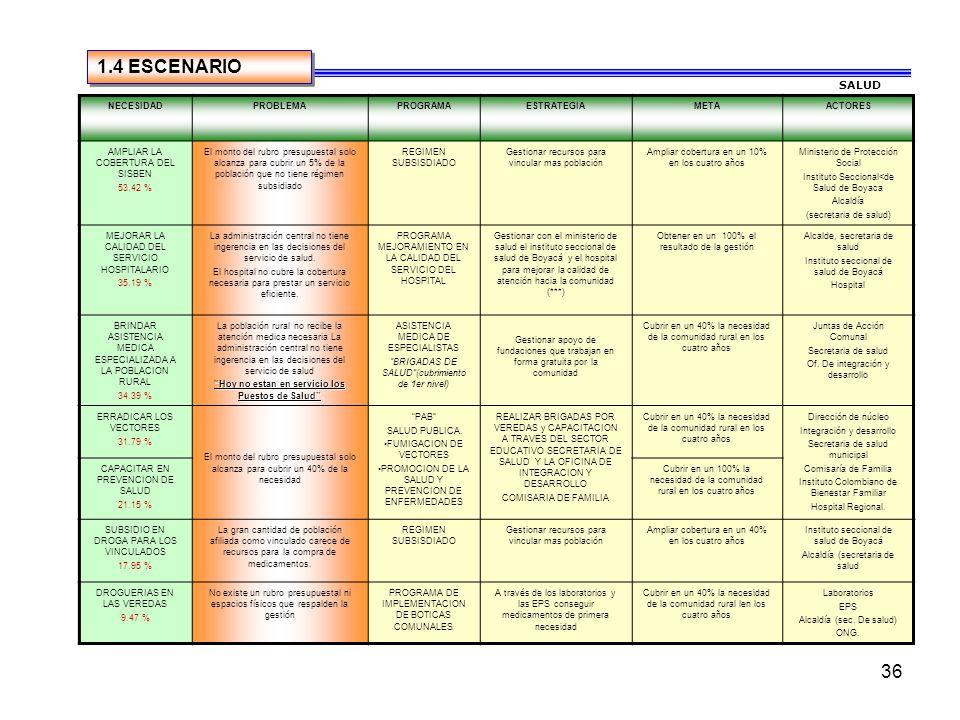 35 CONSOLIDADO URBANO Y RURAL 1.3 PRIORIZACION DE NECESIDADES AREA SALUD