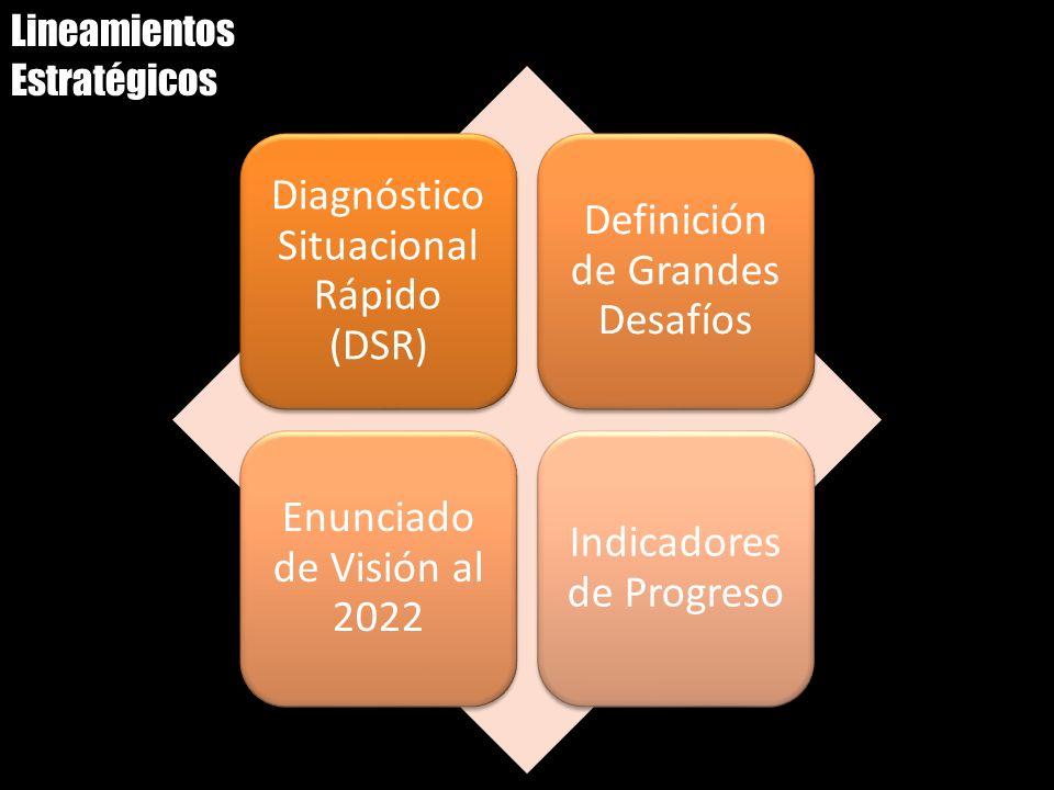 Lineamientos Estratégicos Diagnóstico Situacional Rápido (DSR) Definición de Grandes Desafíos Enunciado de Visión al 2022 Indicadores de Progreso