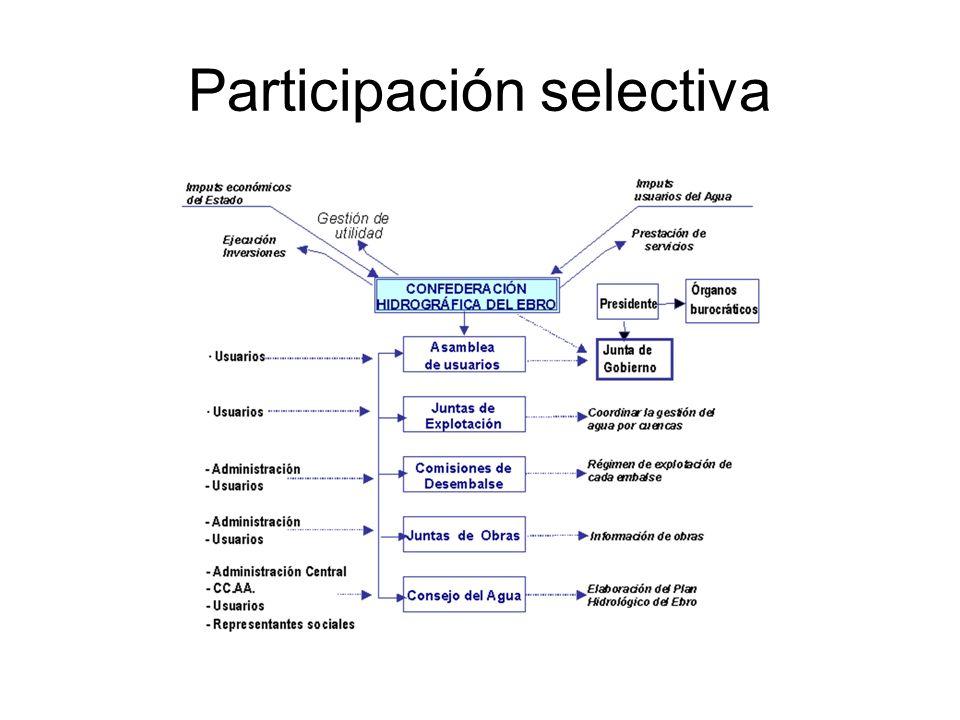 Participación selectiva
