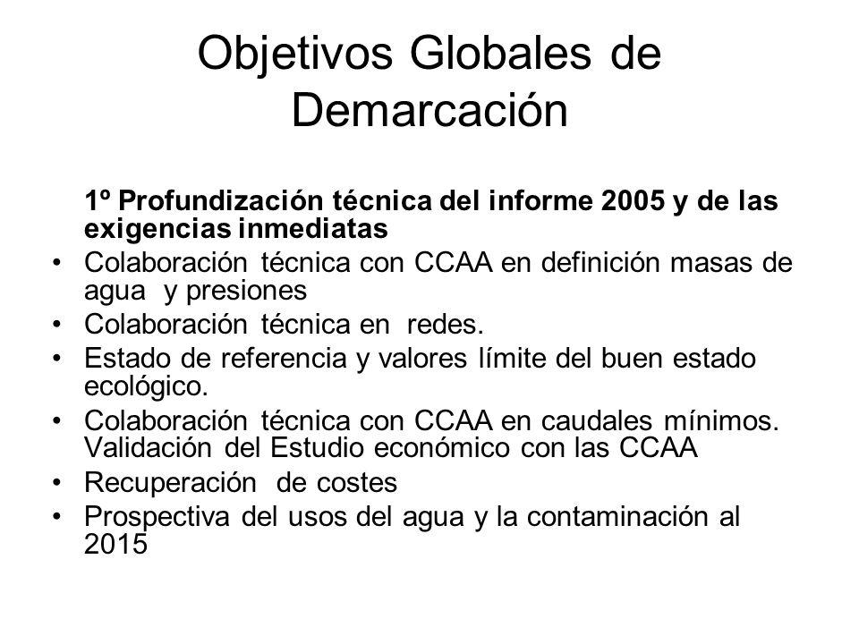 Objetivos Globales de Demarcación 1º Profundización técnica del informe 2005 y de las exigencias inmediatas Colaboración técnica con CCAA en definición masas de agua y presiones Colaboración técnica en redes.