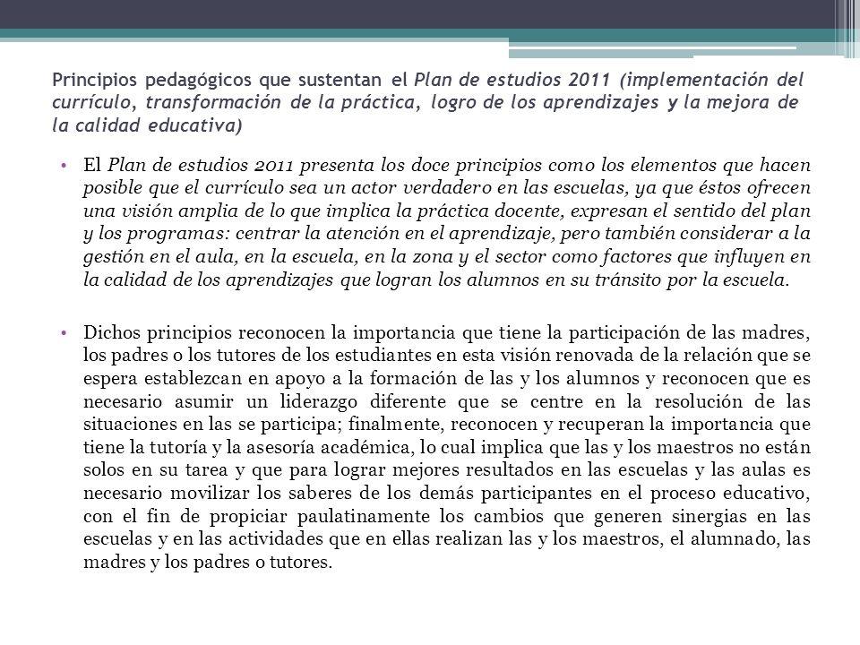Principios pedagógicos que sustentan el Plan de estudios 2011 (implementación del currículo, transformación de la práctica, logro de los aprendizajes