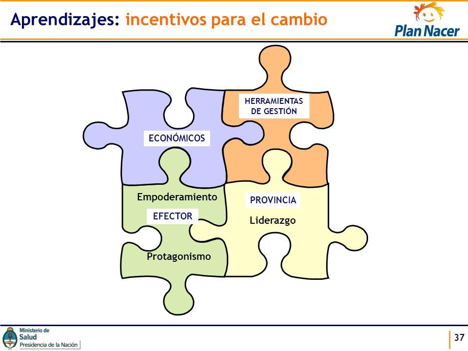 37 Aprendizajes: incentivos para el cambio ECONÓMICOS HERRAMIENTAS DE GESTIÓN EFECTOR PROVINCIA Liderazgo Empoderamiento Protagonismo