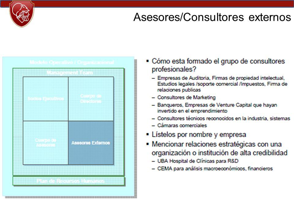 Asesores/Consultores externos
