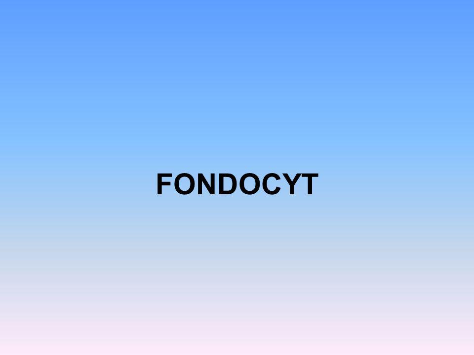 FONDOCYT