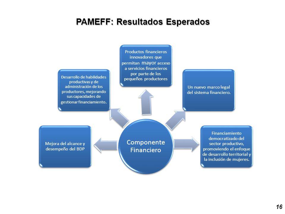 PAMEFF: Resultados Esperados 16 Componente Financiero Mejora del alcance y desempeño del BDP Desarrollo de habilidades productivas y de administración de los productores, mejorando sus capacidades de gestionar financiamiento.