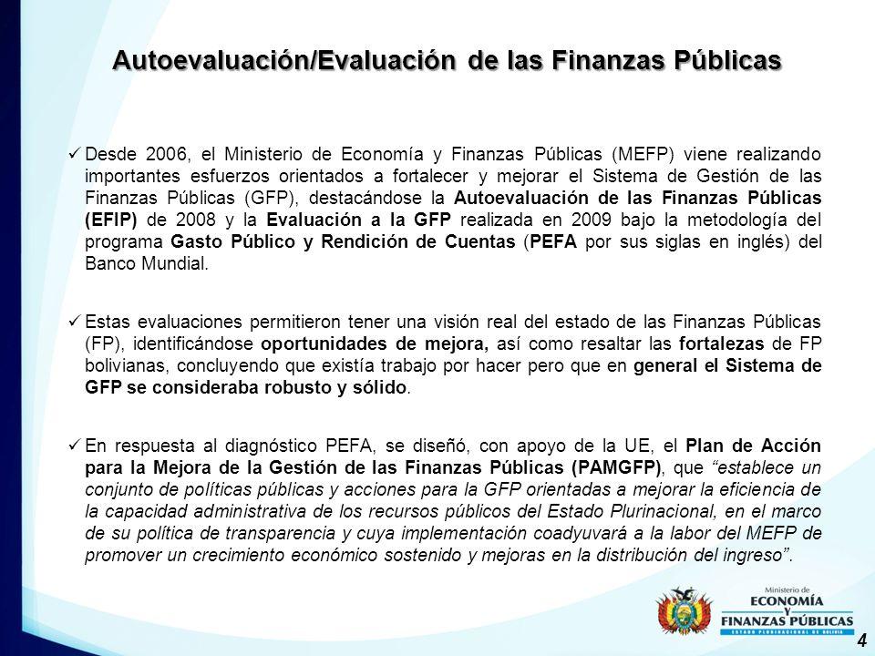 Desde 2006, el Ministerio de Economía y Finanzas Públicas (MEFP) viene realizando importantes esfuerzos orientados a fortalecer y mejorar el Sistema de Gestión de las Finanzas Públicas (GFP), destacándose la Autoevaluación de las Finanzas Públicas (EFIP) de 2008 y la Evaluación a la GFP realizada en 2009 bajo la metodología del programa Gasto Público y Rendición de Cuentas (PEFA por sus siglas en inglés) del Banco Mundial.