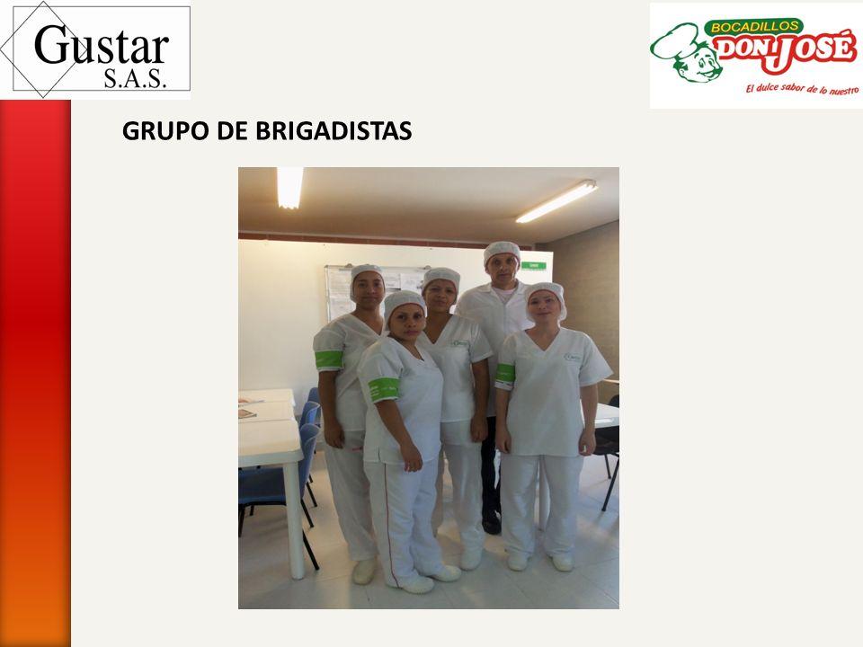 GRUPO DE BRIGADISTAS