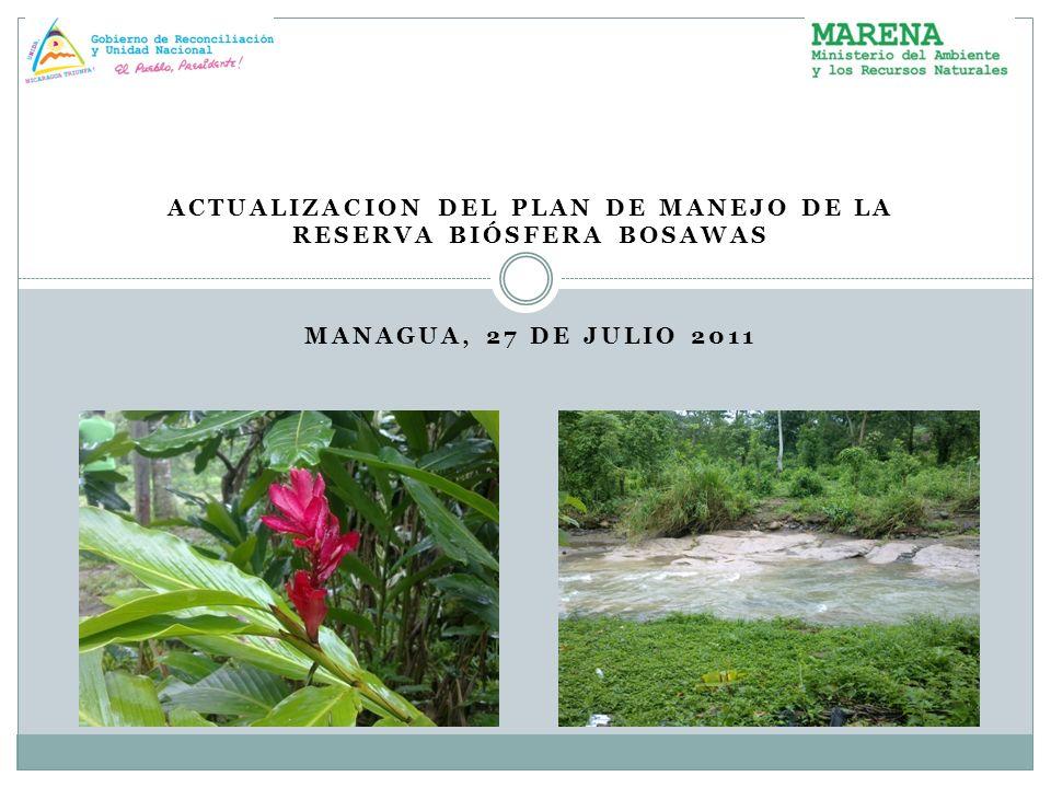 ACTUALIZACION DEL PLAN DE MANEJO DE LA RESERVA BIÓSFERA BOSAWAS MANAGUA, 27 DE JULIO 2011