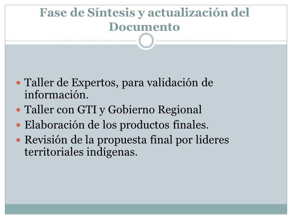 Fase de Síntesis y actualización del Documento Taller de Expertos, para validación de información. Taller con GTI y Gobierno Regional Elaboración de l