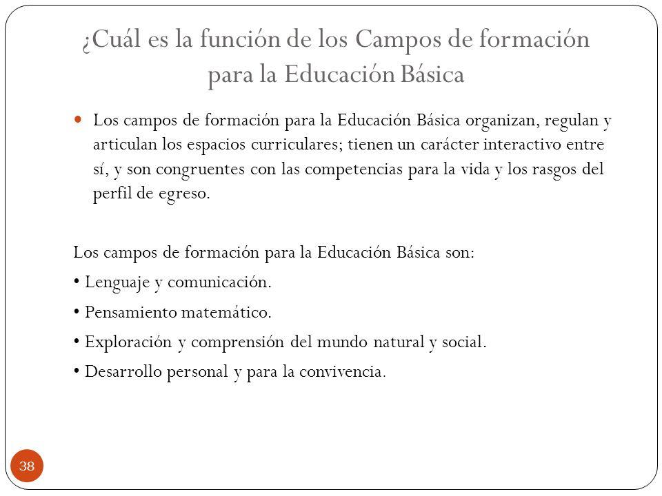 ¿Cuál es la función de los Campos de formación para la Educación Básica Los campos de formación para la Educación Básica organizan, regulan y articula