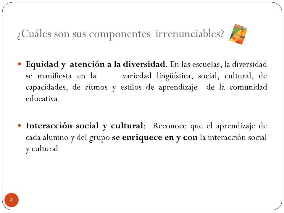 ¿Cuáles son sus componentes irrenunciables? Equidad y atención a la diversidad. En las escuelas, la diversidad se manifiesta en la variedad lingüístic