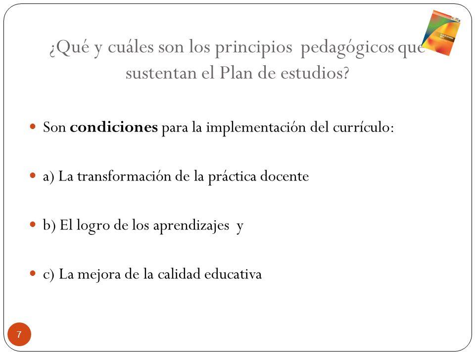 ¿Qué y cuáles son los principios pedagógicos que sustentan el Plan de estudios? Son condiciones para la implementación del currículo: a) La transforma