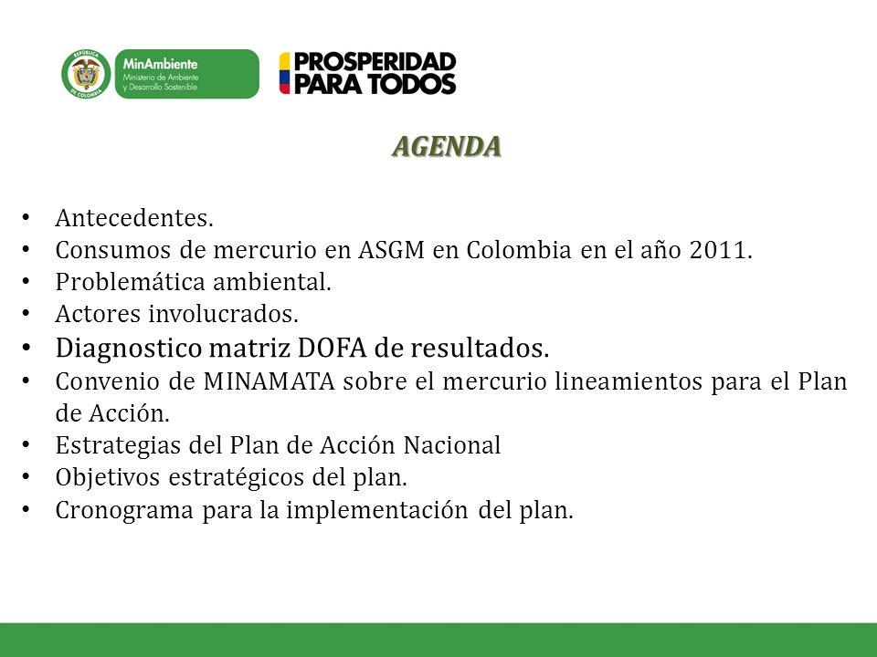 Antecedentes. Consumos de mercurio en ASGM en Colombia en el año 2011. Problemática ambiental. Actores involucrados. Diagnostico matriz DOFA de result
