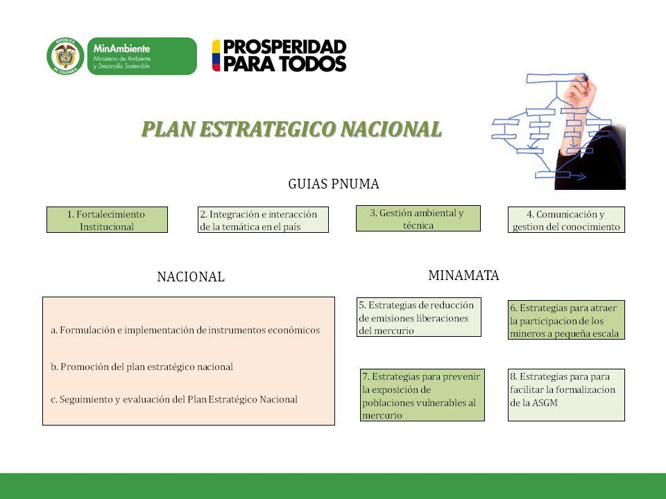 PLAN ESTRATEGICO NACIONAL GUIAS PNUMA MINAMATA NACIONAL