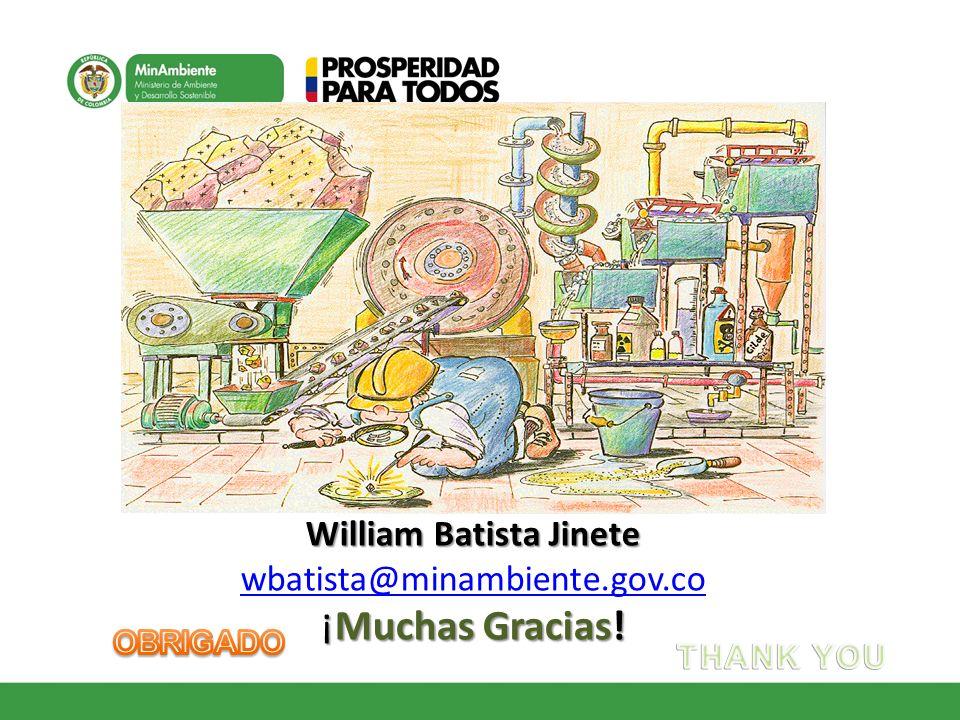 William Batista Jinete wbatista@minambiente.gov.co ¡Muchas Gracias!