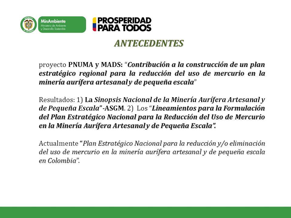 Contribución a la construcción de un plan estratégico regional para la reducción del uso de mercurio en la minería aurífera artesanal y de pequeña esc