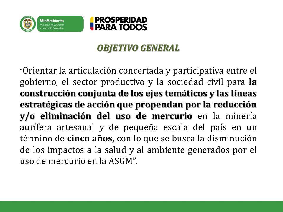 OBJETIVO GENERAL la construcción conjunta de los ejes temáticos y las líneas estratégicas de acción que propendan por la reducción y/o eliminación del