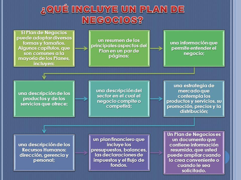 El Plan de Negocios puede adoptar diversas formas y tamaños. Algunos capítulos, que son comunes a la mayoría de los Planes, incluyen: un resumen de lo