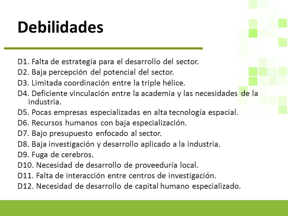 Debilidades D1.Falta de estrategia para el desarrollo del sector.