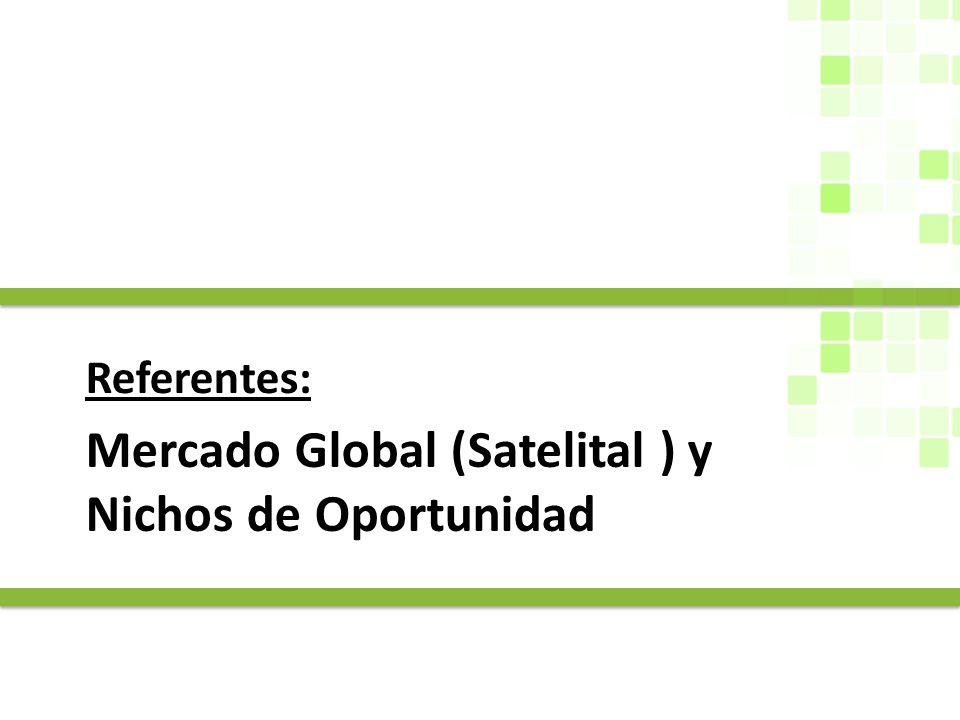 Mercado Global (Satelital ) y Nichos de Oportunidad Referentes:
