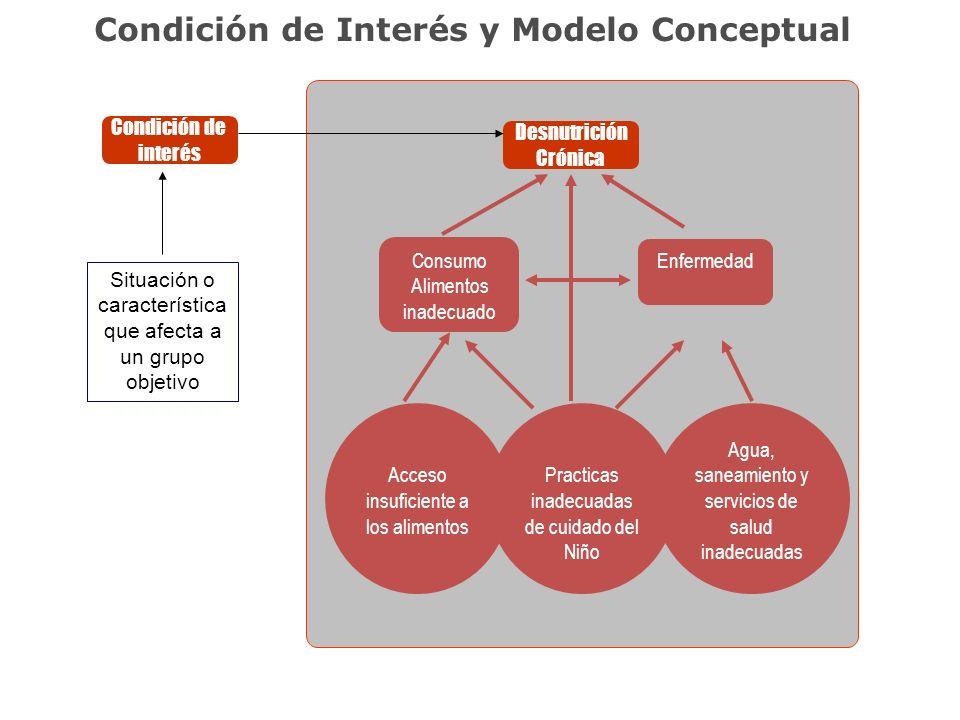 Condición de Interés y Modelo Conceptual Desnutrición Crónica Consumo Alimentos inadecuado Enfermedad Acceso insuficiente a los alimentos Practicas in